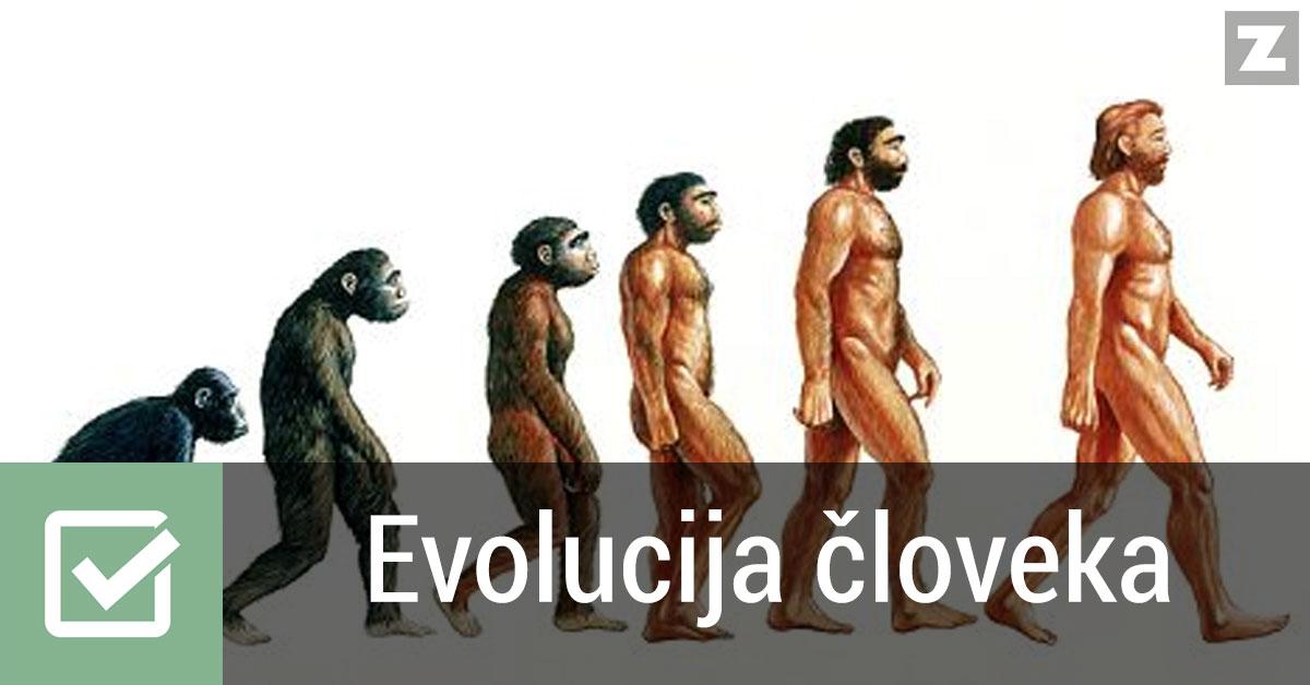Evolucija človeka | Naravoslovje | Preverjanje znanja | Zmaga.com